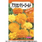 日本農産 野菜の種/種子 とうもろこし バイカラーコーン カクテル84EX 種 (レターパックライト発送 全国一律370円)18160
