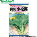 トーホク 野菜の種/種子 とうもろこし あまーいコーン 種 (レターパックライト発送 全国一律370円)