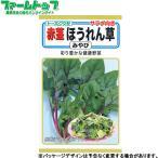 トーホク 野菜の種/種子 とうもろこし あまーいコーンEX 種 (レターパックライト発送 全国一律370円)