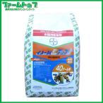 【水稲用除草剤】イノーバDXアップ 1k粒剤 4kg入