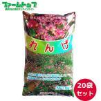 【1kg/975円】れんげの種 花の種 種子 レンゲ草 レンゲの種  花の種  1kg×20袋セット【景観用緑肥】