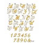 【刺繍】【大】きらきら筆記体のイニシャルアイロンワッペン
