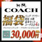 コーチCOACH2017 福袋 3万円でコーチのバッグと財布、小物、マフラーが入った合計4点超豪華福袋 coach-3hb セール 2017 春夏 新作