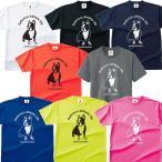 SoccerJunky/サッカージャンキー Tシャツ「フットサル ウェア Pandiani ドライTシャツ」(cp17044)
