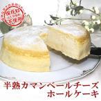 ケーキ 7号 子供 送料無料 プレゼント スイーツ 国産 半熟カマンベールチーズ ホールケーキ (7号・21cm)
