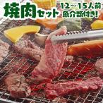 BBQ バーベキュー セット 焼肉 焼き肉 15人前 bbq お肉と魚介の5キロセット