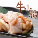 ホルモン 小腸 焼肉  (もつ鍋 バーベキュー)500g