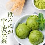 ショッピング アイスクリーム 業務用 明治 ほろにが宇治抹茶2Lアイス(2リットル)