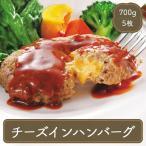 ハンバーグ チーズインハンバーグ (140g×5枚) 冷凍食品 お弁当 弁当 食品 食材 おかず 惣菜 業務用 家庭用 国産 日本食研