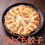 餃子 ぎょうざ 一口ぎょうざ 通販 (10g×20個)