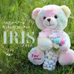 母の日 プレゼント ギフト スイーツ カーネーション 付 2021 送料無料 おしゃれ かわいい ぬいぐるみ 熊 パステルベアー&ドラジェ IRIS