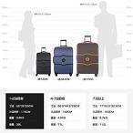 DELSEY デルセー スーツケース シャトレ ハードキャリーケース キャリーバッグ CHATELET HARD+ ストッパー機能 機内持ち