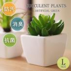 抗菌・防汚・防臭効果を発揮するフェイクグリーン