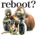 【中古CD】flumpool『reboot~あきらめない詩~/流れ星』(初回限定盤)