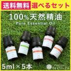 【4種新登場 セール】アロマオイル セット 種類制限なし 5ml 選べる香り6本 メール便 送料無料 高品質 エッセンシャルオイル 全33種【mlb】