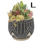 植木鉢 おしゃれ 室内 鉢 鉢カバー  アフリカン ポット04 Lサイズ CP18L