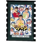ザ★プチモビクス プッチモニ DVD