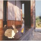 風景描写 / 音速ライン (CD)