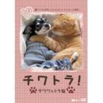 チワトラ!チワワとトラ猫★凛と正宗にぃちゃんのビューティフォーな毎日! /  (DVD)