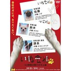 いぬ会社 Vol.1 DVD