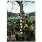 天国はまだ遠く 加藤ローサ/徳井義実 DVD