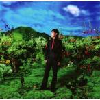 Yahoo!Felista玉光堂無力な自分が許せない / DAMIJAW [CD-Single]