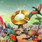 house of globe globe CD