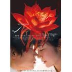 シャニダールの花 綾野剛/黒木華 DVD