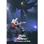 「Walls Is Auroras」2010.3.12 日本武道館 / NICO Touches the Walls (DVD)