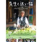 先生と迷い猫 豪華版 イッセー尾形 DVD