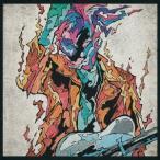 Fire Bird(通常盤) / MIYAVI (CD)