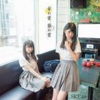 金の愛、銀の愛(Type-D)(初回生産限定盤)(DVD付) SKE48 DVD付CD