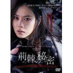 荊棘の秘密 ソン・イェジン DVD