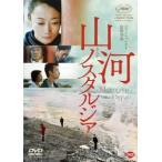 山河ノスタルジア チャオ・タオ DVD
