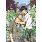 SUPER LOVERS 2 第2巻 限定版 SUPER LOVERS CD付DVD