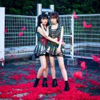 Pinky! Pinky!(通常盤) / Idol Formerly Known As LADYBABY (CD)
