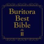 ブリトラBESTバイブルII〜ひとりでこっそり聴いた方がいい曲集〜 / ブリーフ&トランクス (CD)