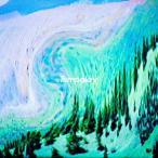 なんて素晴らしき世界 / Tempalay (CD)