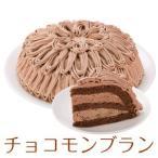 即日発送 チョコモンブラン 7号 21.0cm 12カットタイプ 誕生日ケーキ バースデーケーキ 送料無料(※一部地域除く)