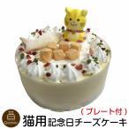 (新商品) ねこちゃん大好き! 猫用ケーキ 誕生日ケーキ ネコ用 レアチーズ ペットケーキ 誕生日ケーキ バースデーケーキ neko cat cake