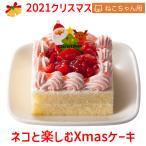 ご予約承り中! 2021 クリスマスケーキ コミフ やさしいスイーツ ネコと楽しむXmasケーキ 小麦・乳・卵不使用 ペット用ケーキ ネコ用ケーキ