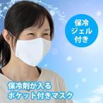 夏用 冷やしマスク 保冷剤ポケット 大人用 布メッシュマスク 繰り返し使えるエコマスク 保冷剤2個付き 日本製 ファムベリー ネコポス可 [M便 1/5]
