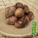 さといも、7個〜8個、産地直送、鹿児島県産、宮崎県産、野菜セットと同梱で送料無料