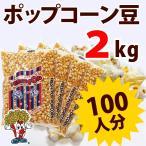 ポップコーン ポップコーン豆 バタフライタイプ 2kg 500g×4袋 約100人分 種