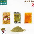 メール便送料込 ポップコーン キャラメルポップコーン 5人セット ポップコーン豆 フレーバー オイル 材料セット