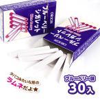 ブルーベリーシガレット ¥30×30入 駄菓子 子供会 景品 お祭り 縁日