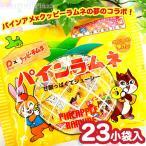 カクダイ パインラムネ クッピーコラボ 23小袋入 駄菓子 17J31