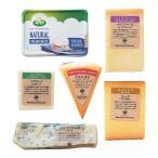 世界 チーズ 詰め合わせ 食べ比べ おつまみ 6種類セット ワイン アーラクリームチーズ ゴルゴンゾーラ ゴーダチーズ パルミジャーノ ペロリーノロマーノ