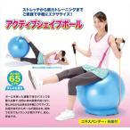 バランスボール65cm 健康器具●アクティブシェイプボール(台座・エキスパンダー付)#870309
