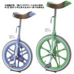 三和体育 スポーツ用具 学校用具 カラ-一輪車 18インチ (グリーン) S-9113 特殊送料(ランク:B) (SWT) (QCB02)